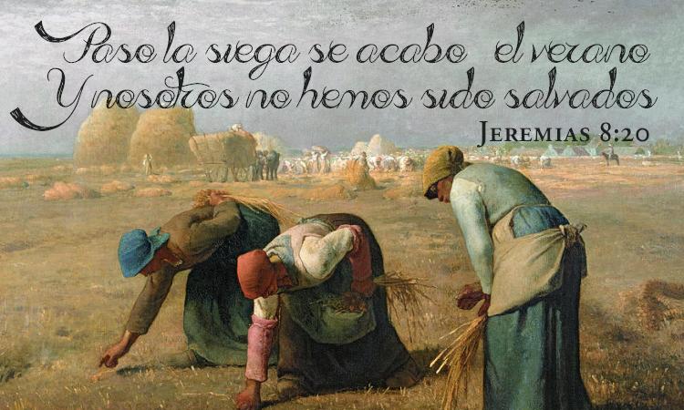 Cosecha, Jeremias 8:20